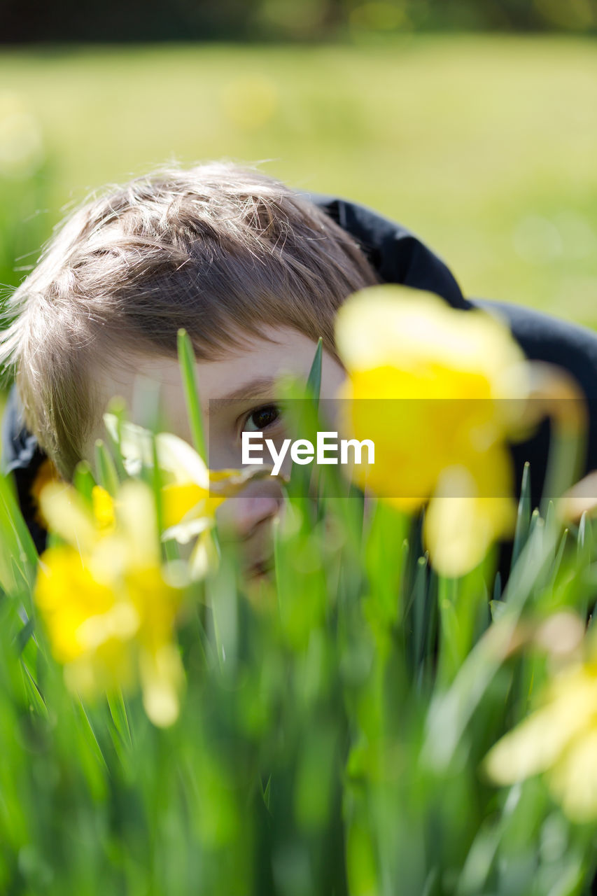 Portrait of boy sitting amidst plants at park