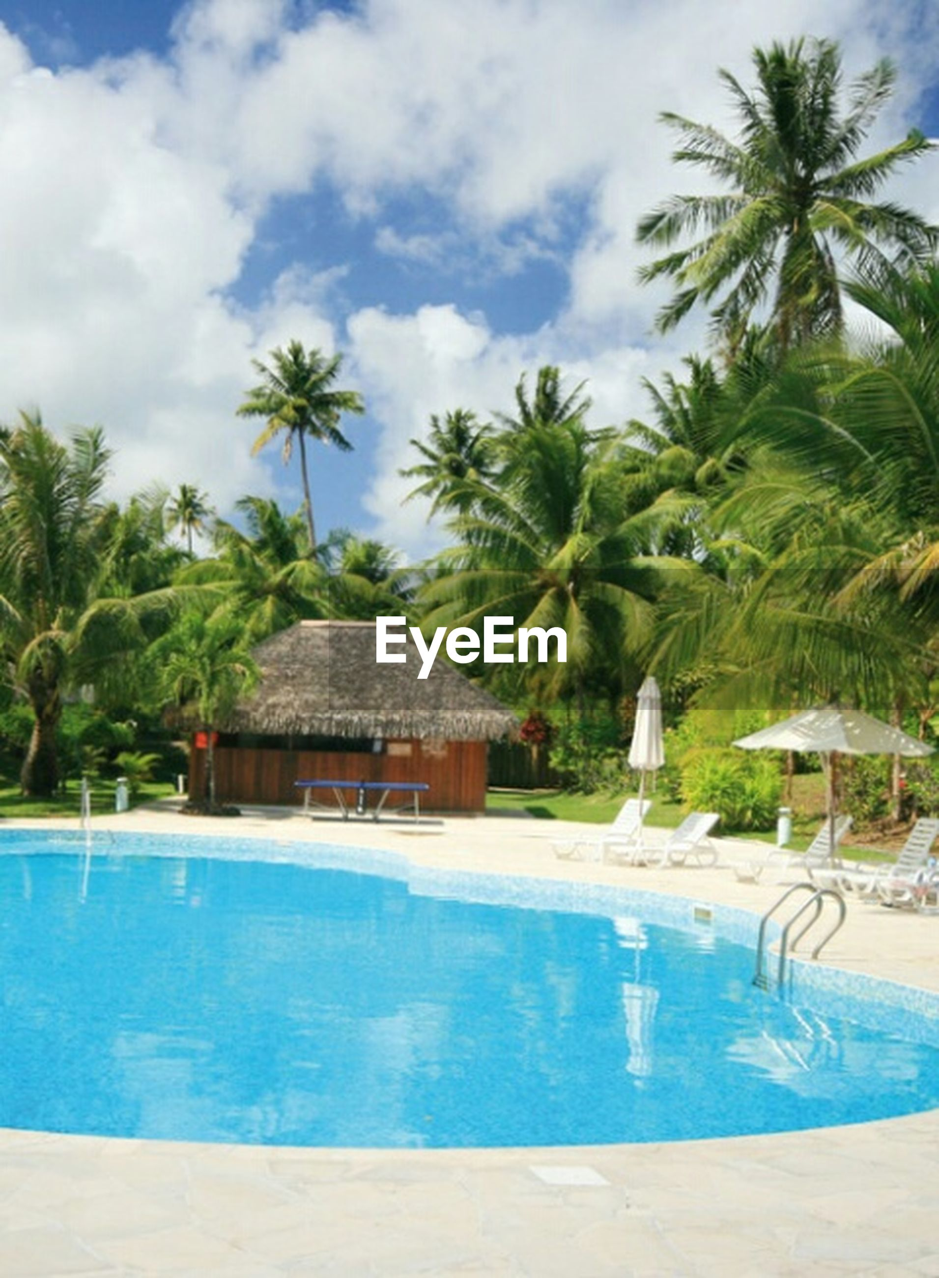 palm tree, water, tree, swimming pool, sky, built structure, beach, sea, architecture, tourist resort, building exterior, cloud - sky, blue, nature, cloud, house, tranquility, thatched roof, beauty in nature, growth