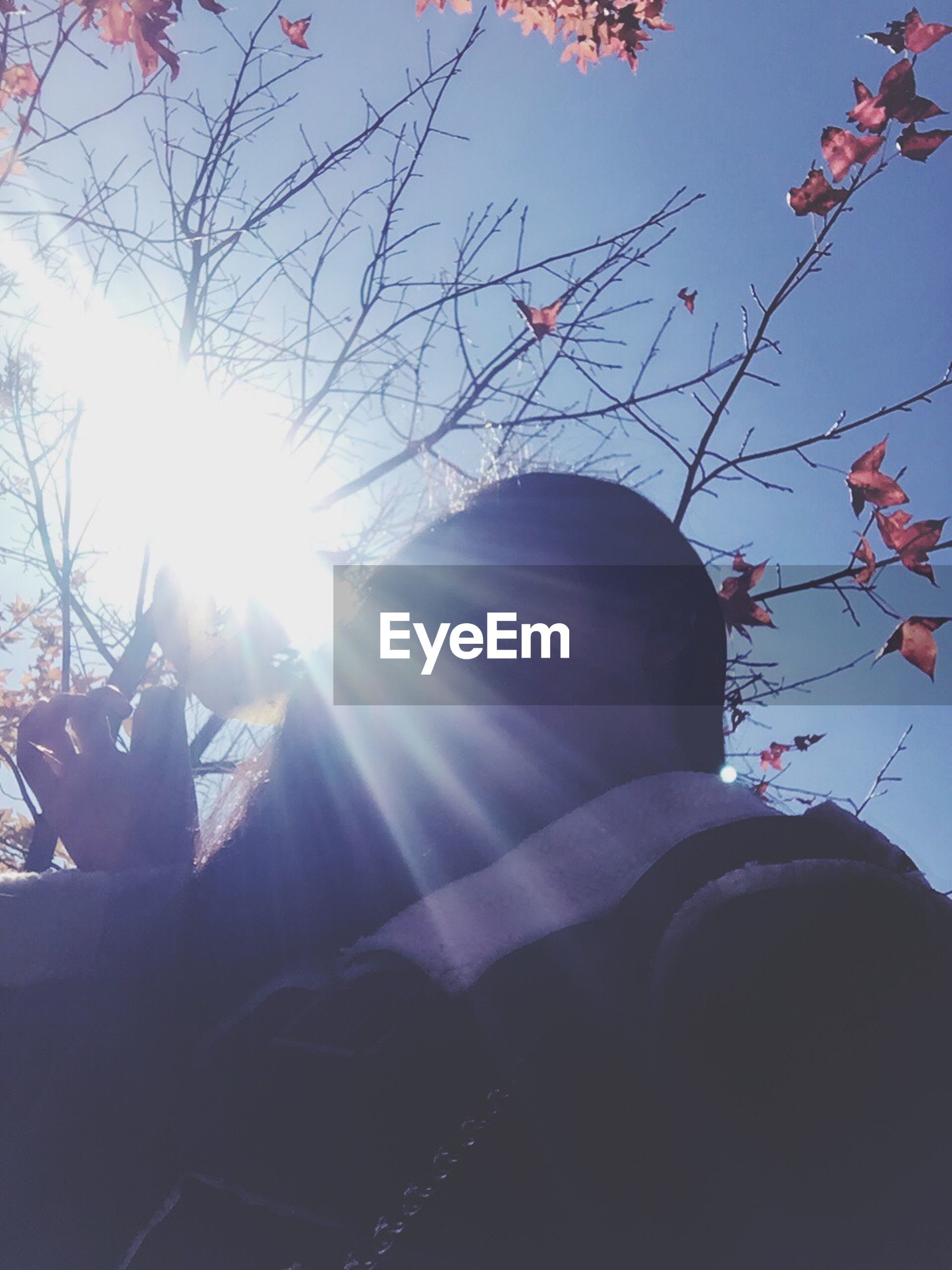 lens flare, sunlight, sunbeam, real people, sun, one person, leisure activity, lifestyles, day, tree, outdoors, sky, cold temperature, close-up, human body part, human hand, low section, people