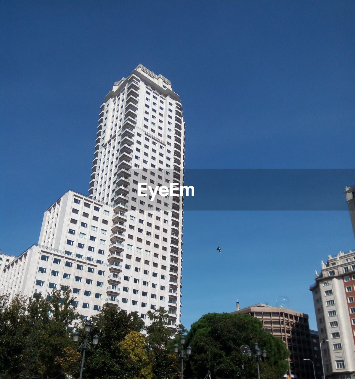 architecture, building exterior, low angle view, built structure, skyscraper, tree, city, day, blue, no people, clear sky, outdoors, modern, sky, cityscape