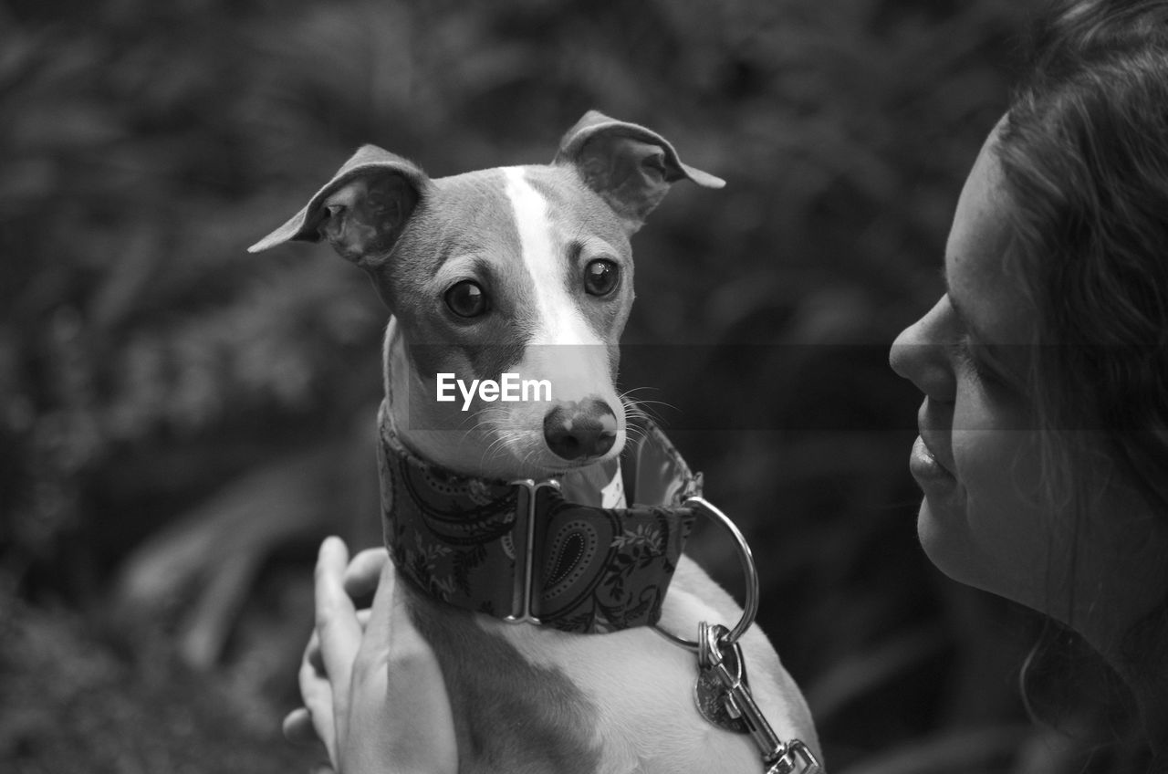 Girl and her italian greyhound looking at camera portrait, in black and white