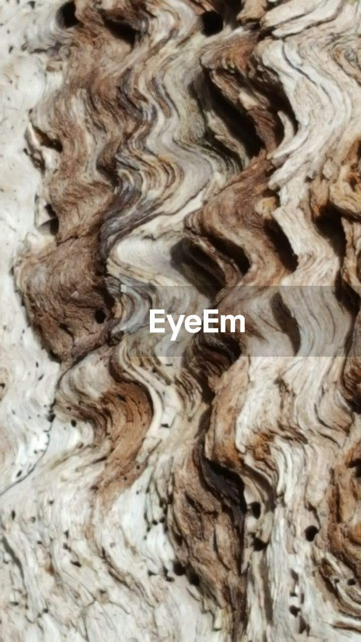 full frame, backgrounds, no people, textured, pattern, close-up, indoors, nature, day