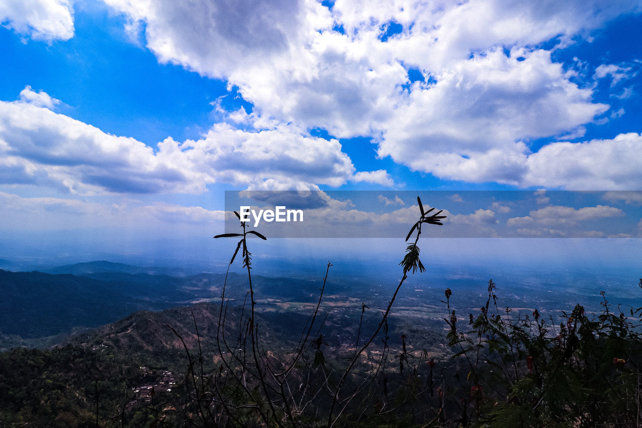 cloud - sky, sky, beauty in nature, scenics - nature, environment, nature, tranquil scene, landscape, land, renewable energy, no people, alternative energy, turbine, tranquility, wind turbine, non-urban scene, fuel and power generation, plant, day, wind power, outdoors