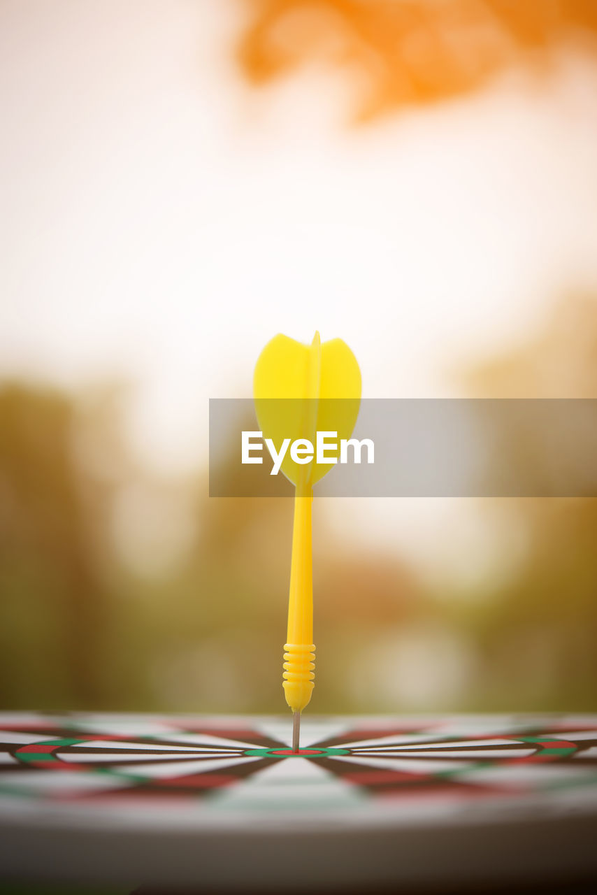 yellow, selective focus, close-up, no people, focus on foreground, indoors, still life, nature, balloon, freshness, music, day, table, toy, string, vulnerability, ribbon, fragility, heart shape