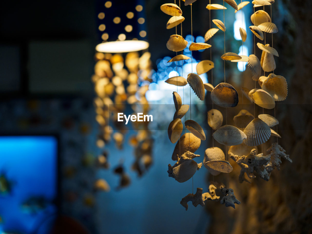 Low Angle View Of Wind Chimes Made From Seashells