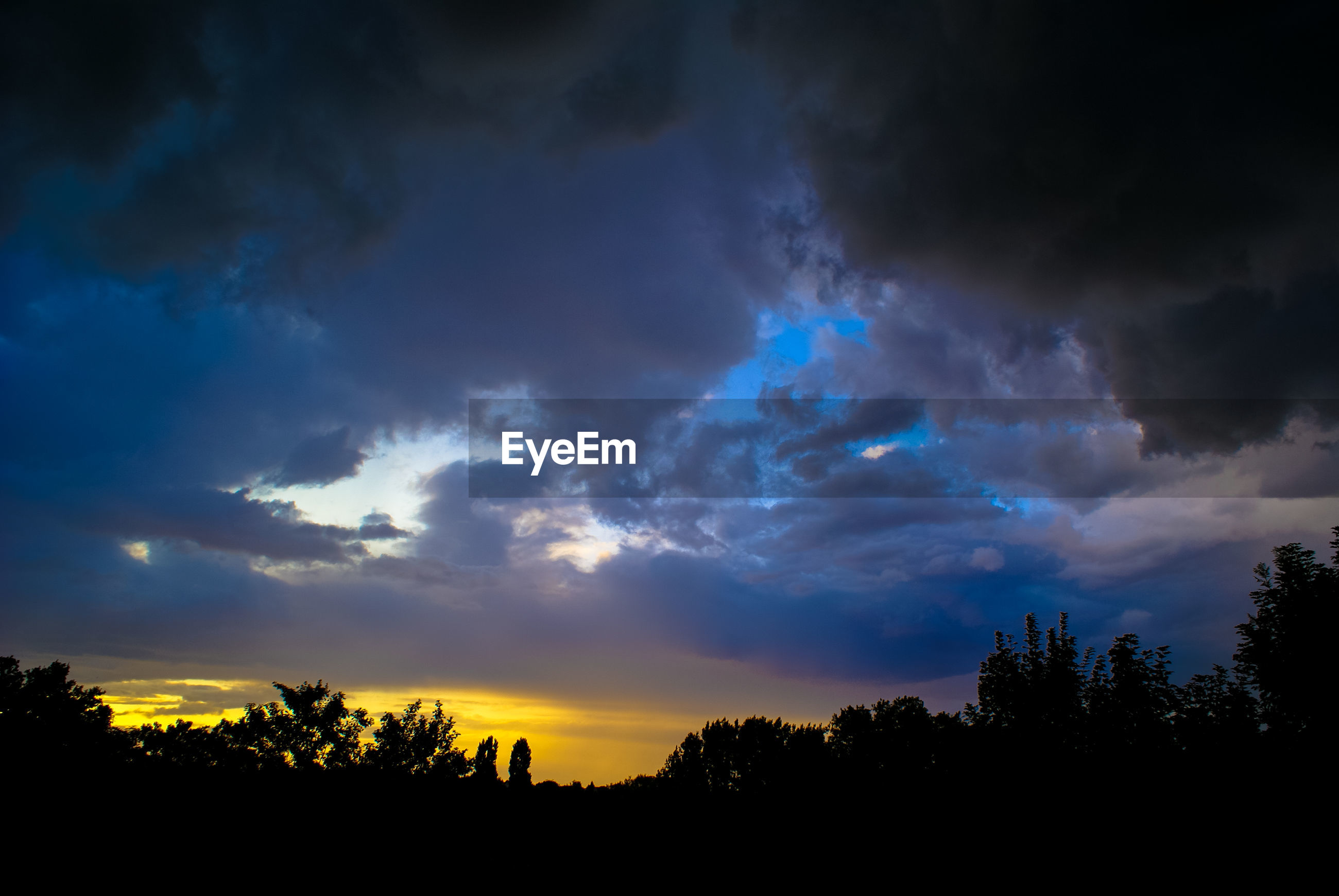 SILHOUETTE OF TREES AGAINST CLOUDY SKY AT SUNSET