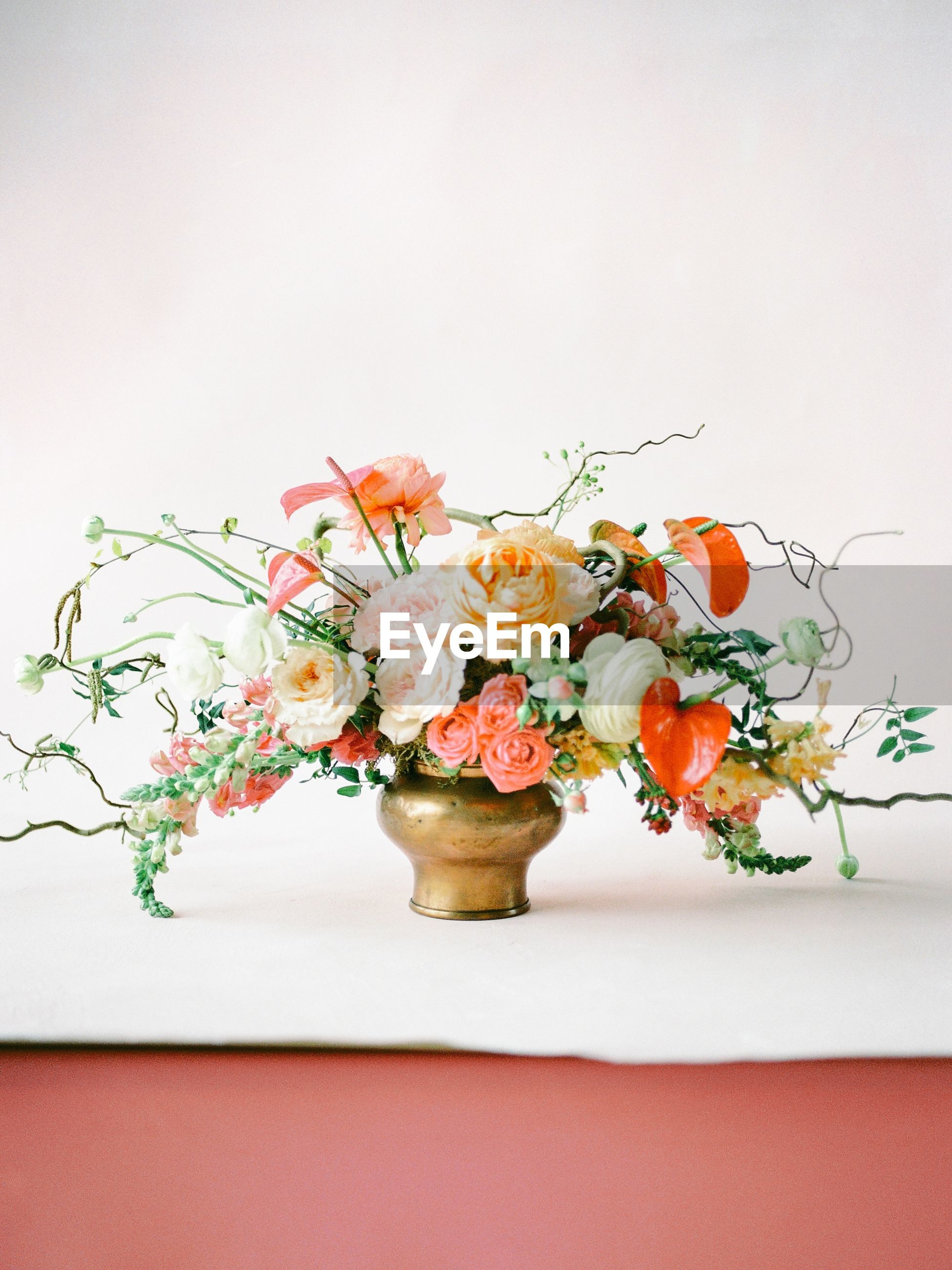 Close-up of flower vase on table against white wall