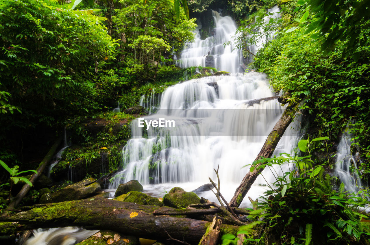 waterfall, motion, long exposure, flowing water, forest, nature, tree, beauty in nature, water, lush foliage, green color, blurred motion, scenics, growth, no people, moss, tranquil scene, outdoors, plant, day, freshness