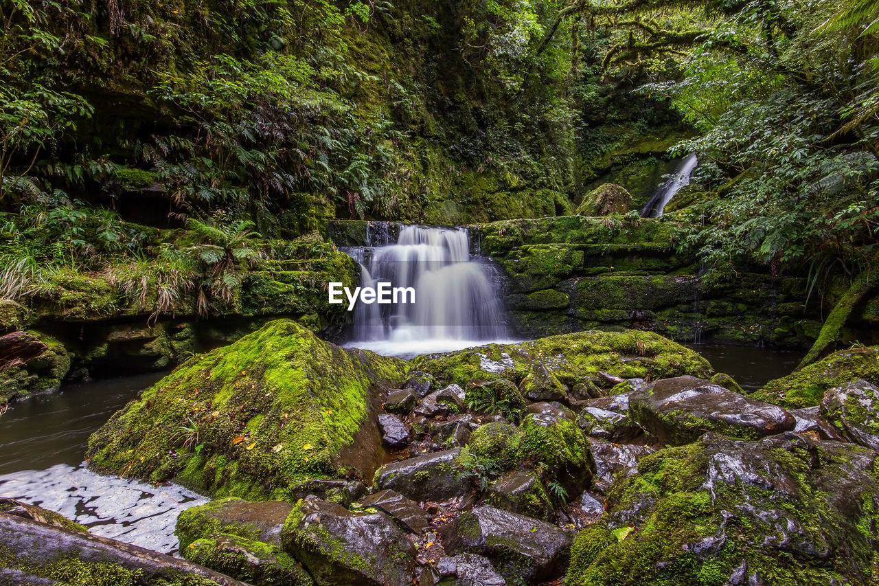 water, motion, scenics - nature, long exposure, tree, waterfall, plant, forest, beauty in nature, flowing water, rock, blurred motion, rock - object, land, moss, nature, solid, green color, growth, no people, flowing, rainforest, outdoors, power in nature, stream - flowing water, falling water