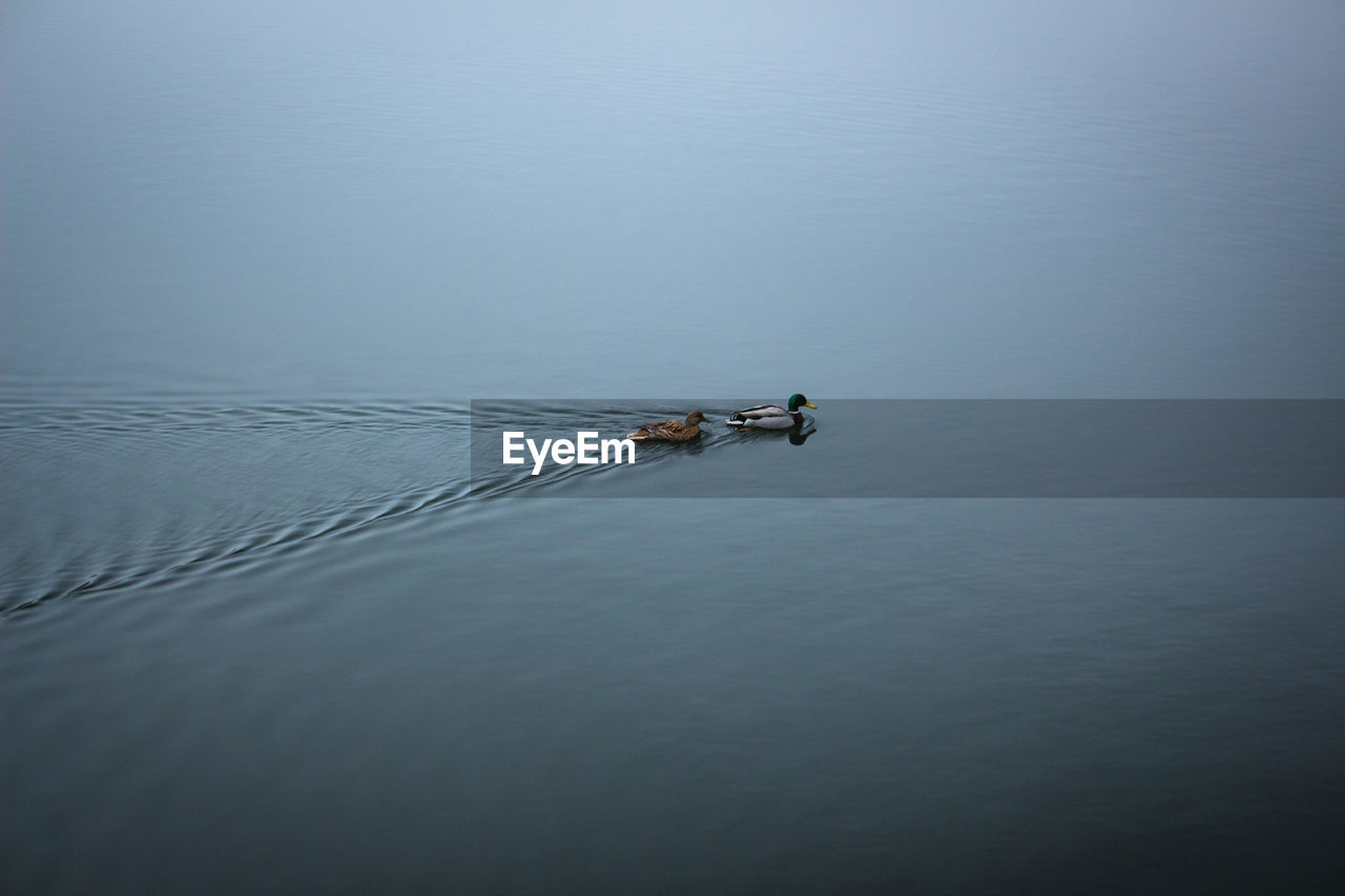 High Angle View Of Boat Sailing On Lake