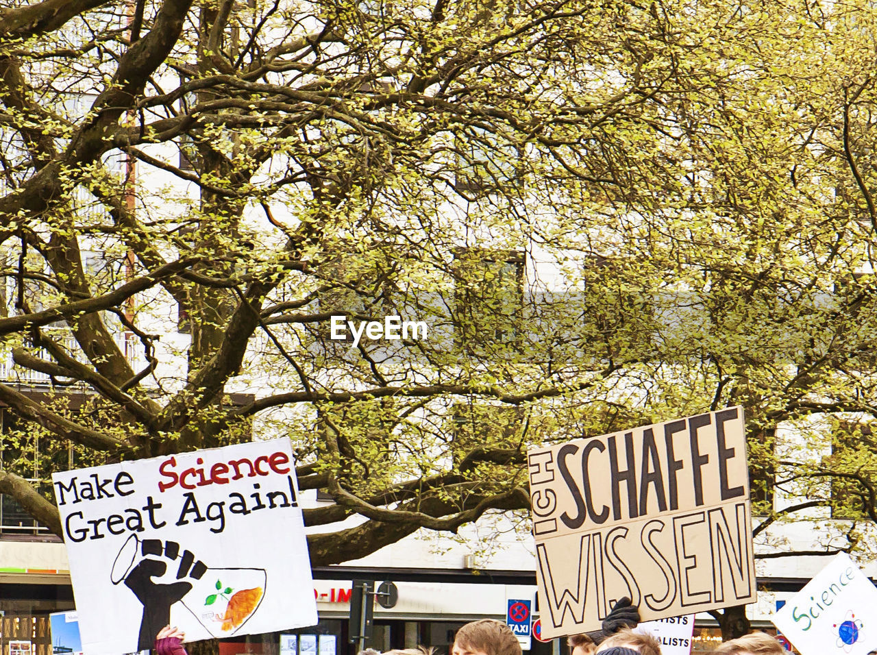 text, western script, communication, tree, protest, placard, day, banner - sign, message, outdoors, protestor