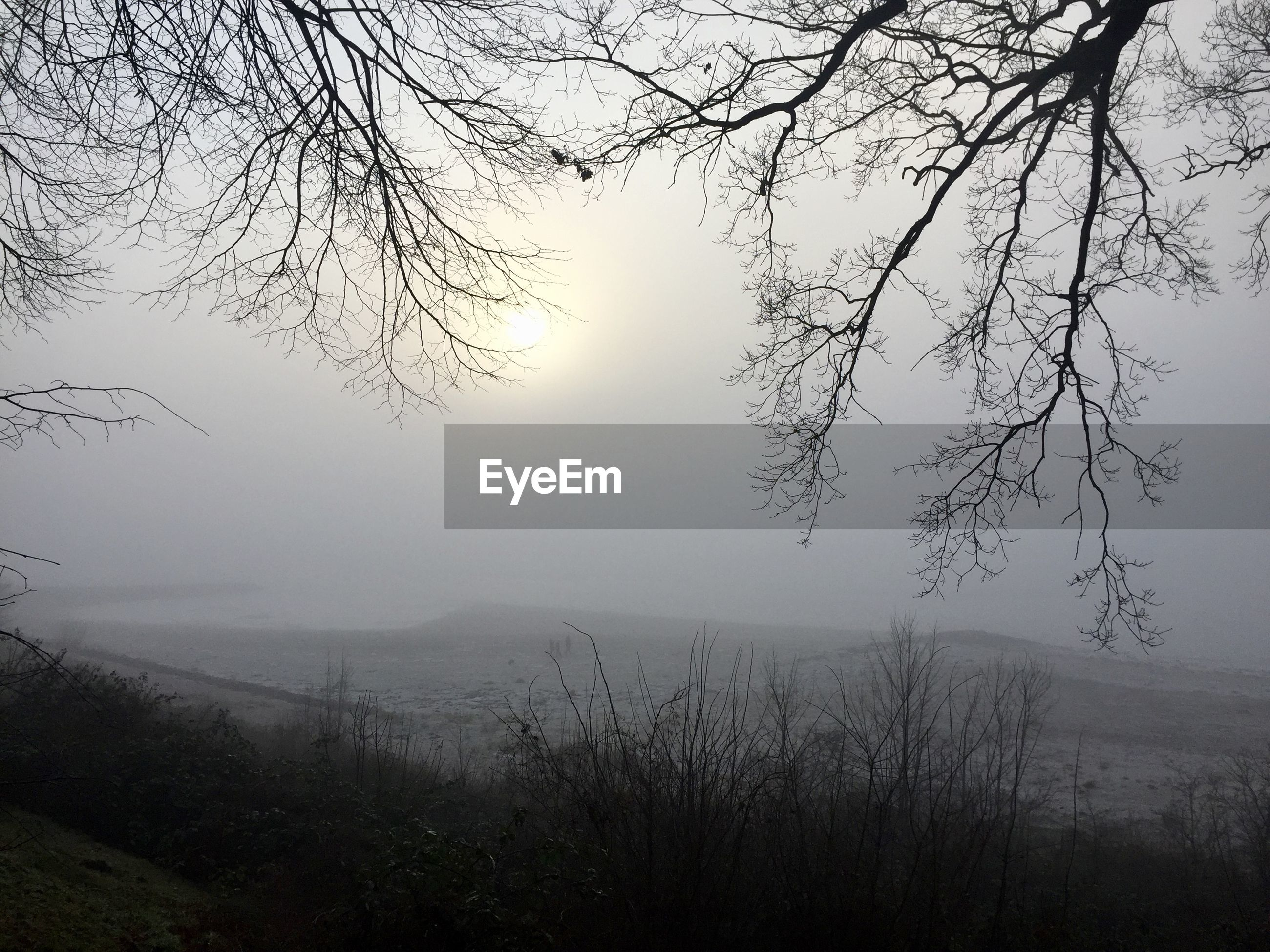 VIEW OF CALM SEA AT FOGGY WEATHER