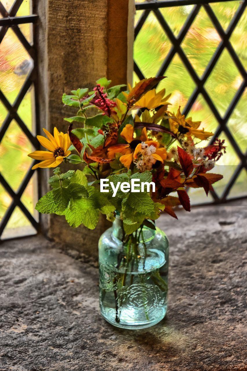 CLOSE-UP OF FLOWER VASE AGAINST PLANTS
