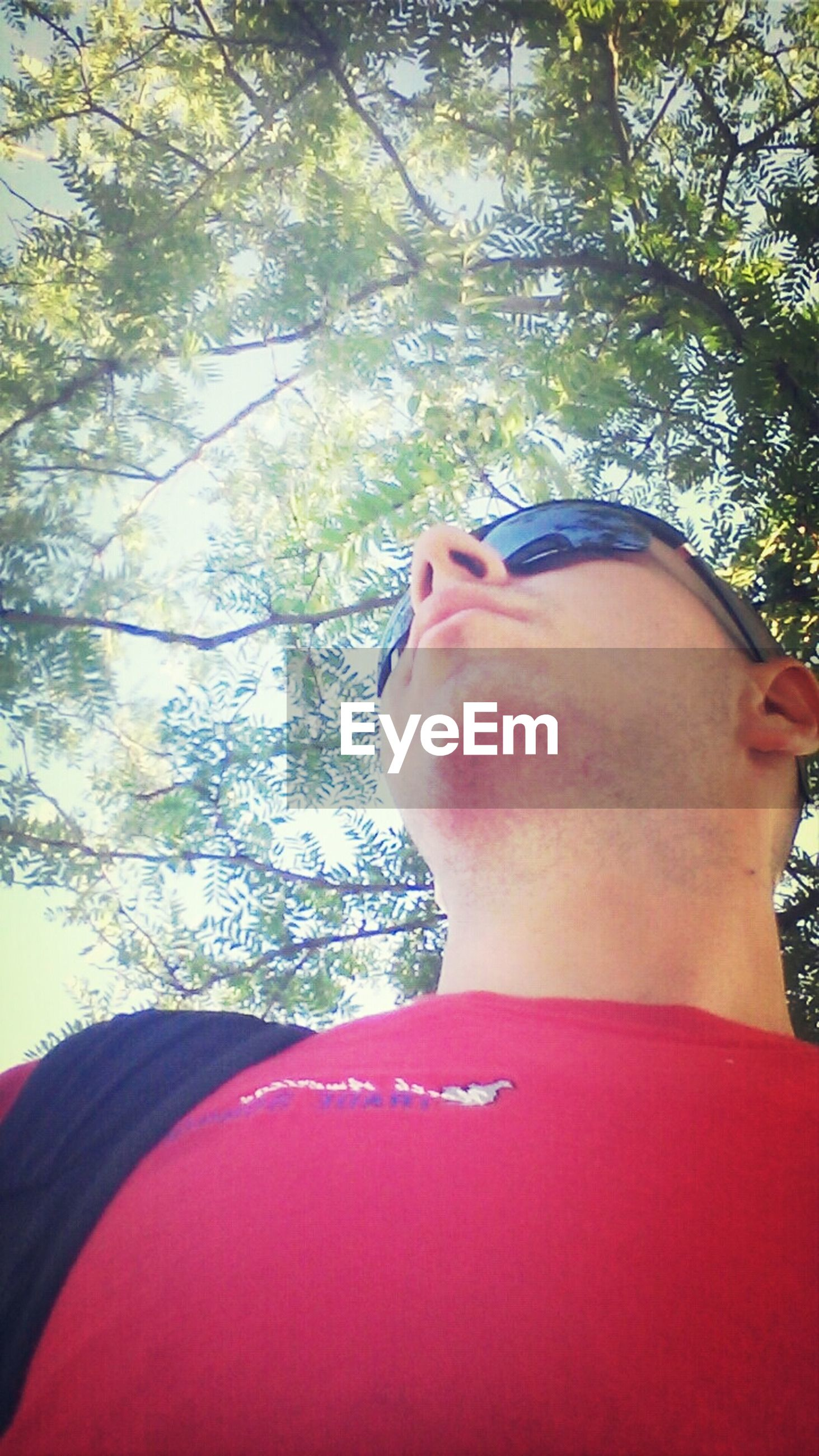 tree, lifestyles, leisure activity, headshot, red, low angle view, branch, close-up, part of, focus on foreground, day, young adult, outdoors, head and shoulders, sunlight, men, person