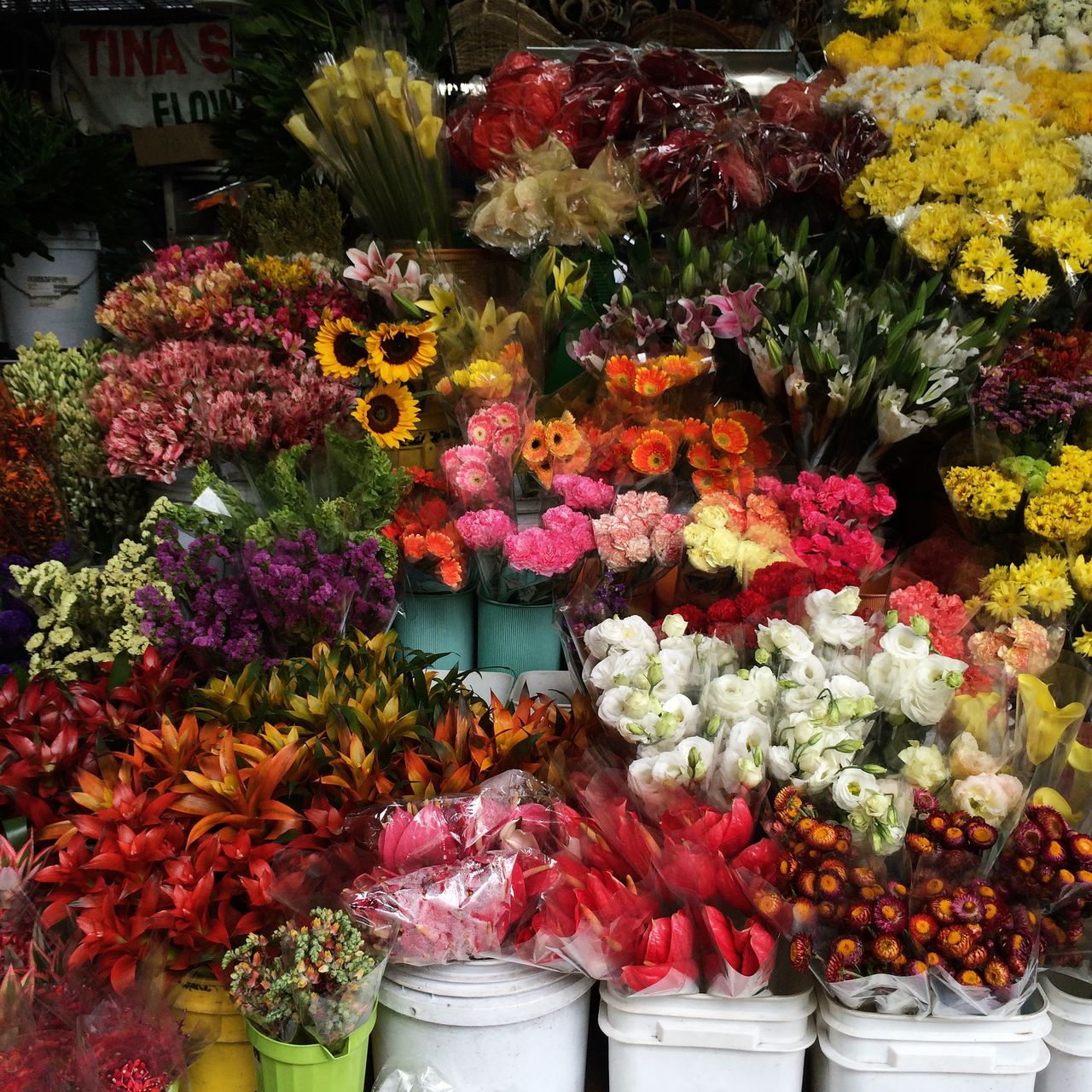 Multi colored flowers for sale in market