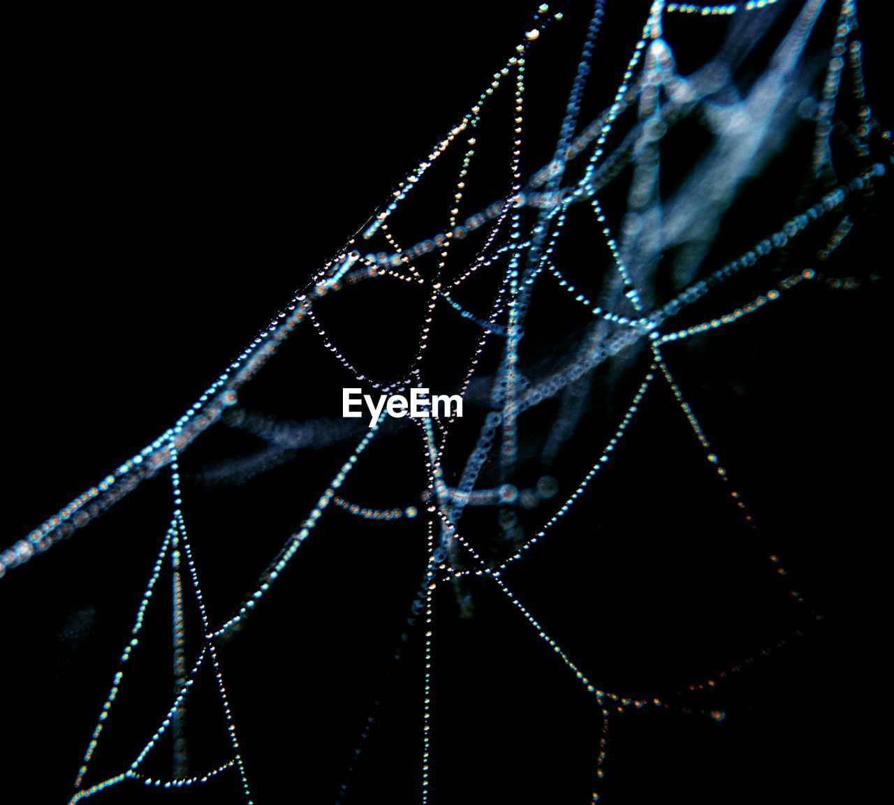 Close-Up Of Wet Spider Web At Night