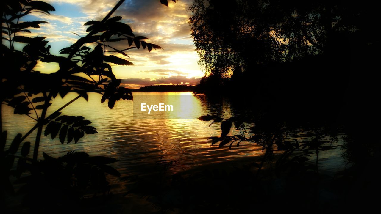 sunset, silhouette, reflection, water, tree, nature, sky, lake, scenics, beauty in nature, tranquil scene, tranquility, no people, cloud - sky, outdoors, growth, day