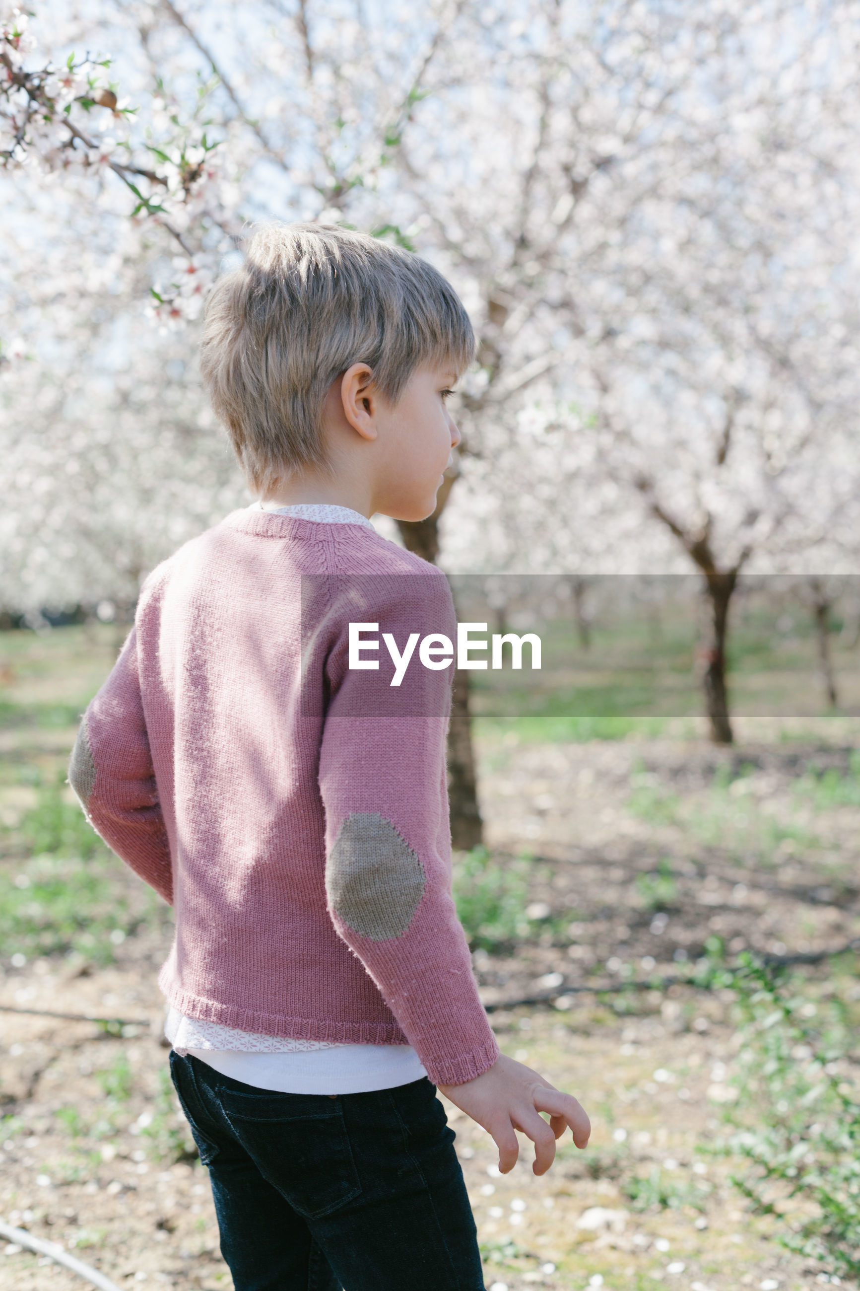 Boy standing against trees during winter