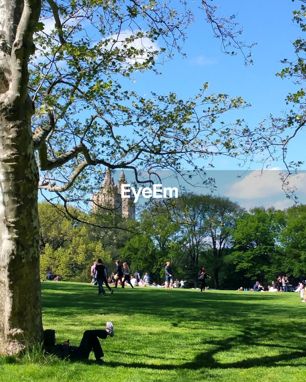 People at sheep meadow in city