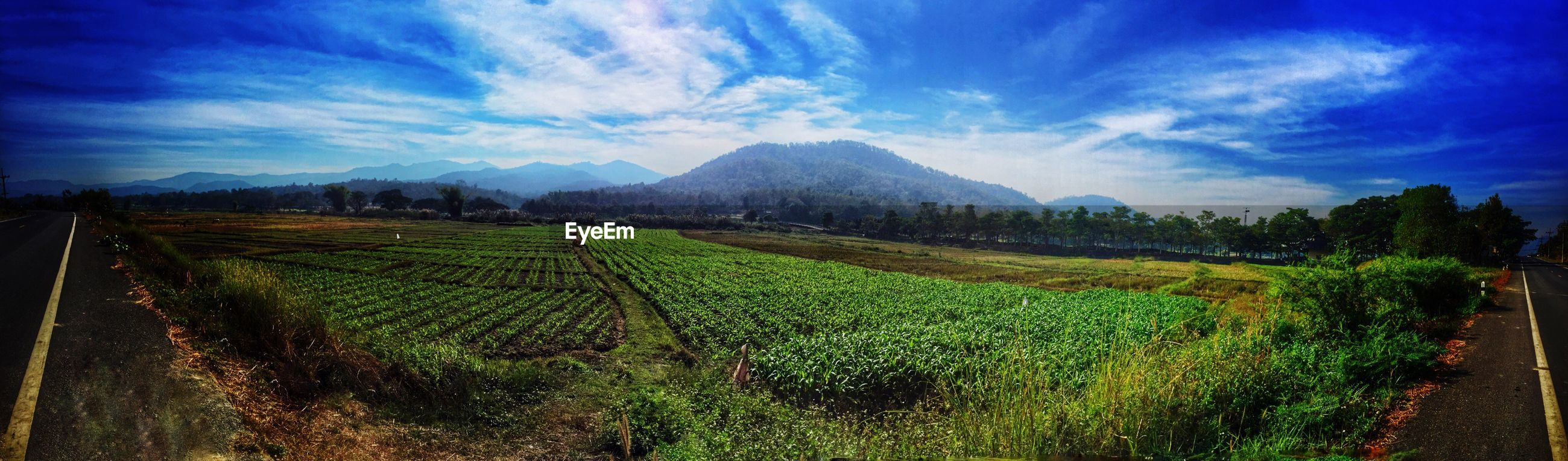 landscape, sky, tranquil scene, field, tranquility, agriculture, rural scene, mountain, beauty in nature, scenics, nature, farm, cloud - sky, growth, grass, plant, panoramic, green color, cloud, blue