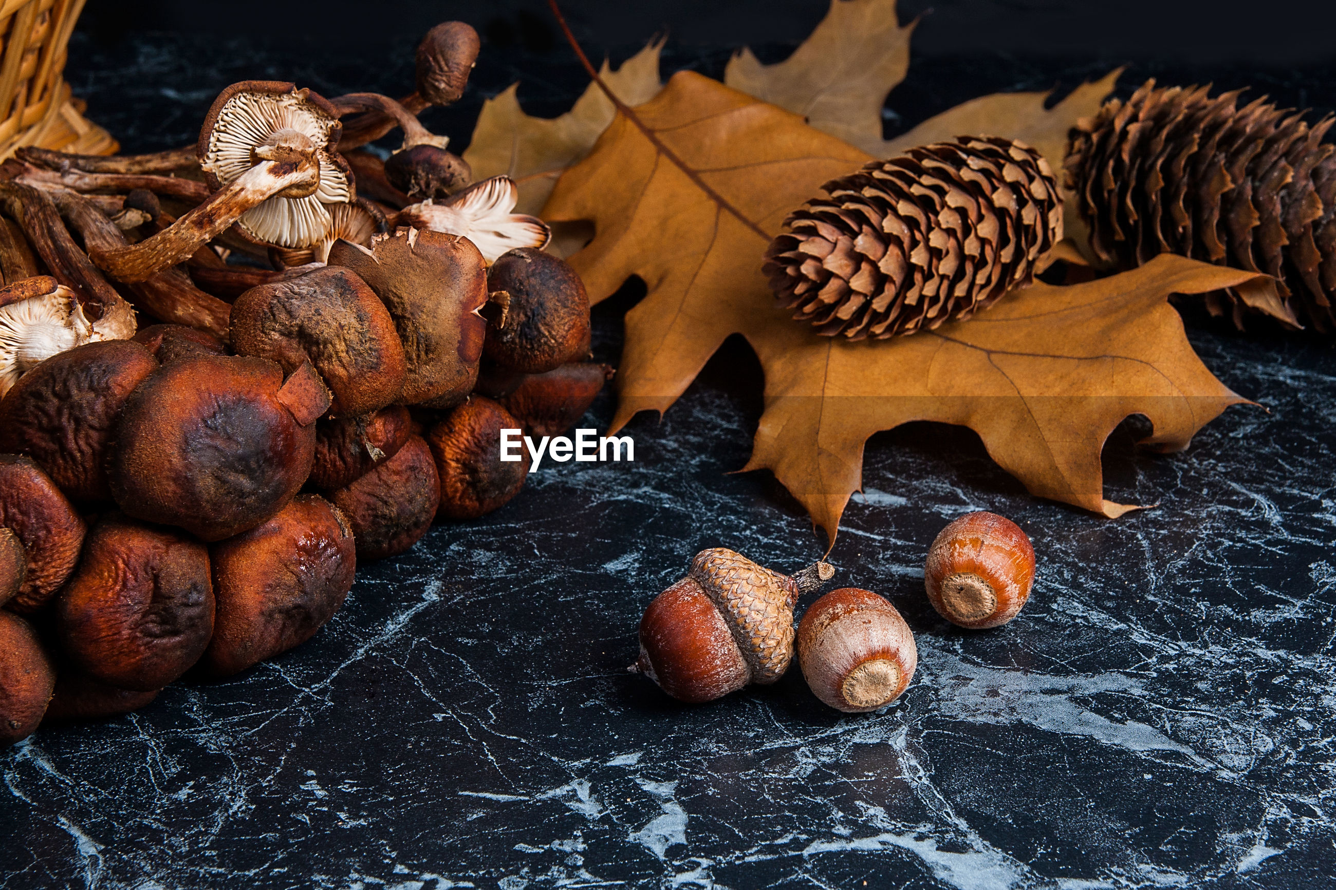 High angle view of mushrooms and acorns on granite table