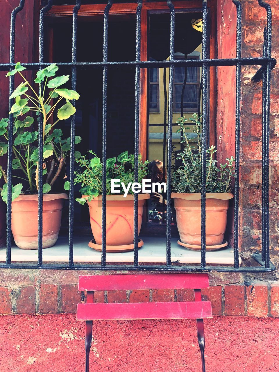 architecture, built structure, plant, window, building exterior, day, potted plant, building, growth, nature, outdoors, real people, wall - building feature, glass - material, wall, plant part, leaf, door, red, brick, flower pot