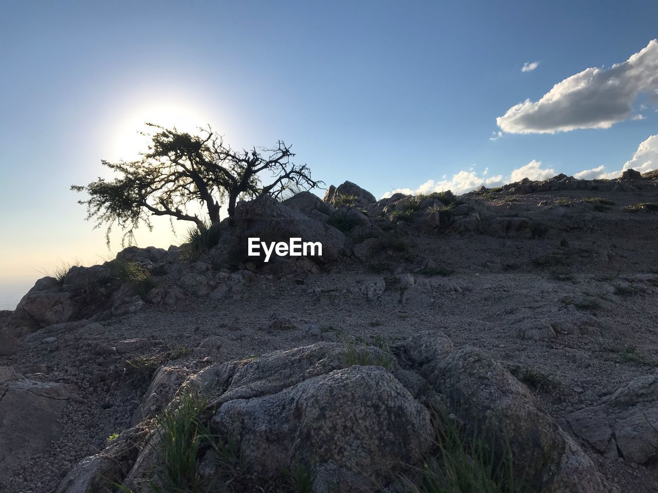 sky, rock, tranquility, scenics - nature, tranquil scene, beauty in nature, cloud - sky, non-urban scene, rock - object, nature, landscape, solid, environment, no people, day, plant, rock formation, physical geography, land, geology, outdoors, arid climate, climate, formation, eroded