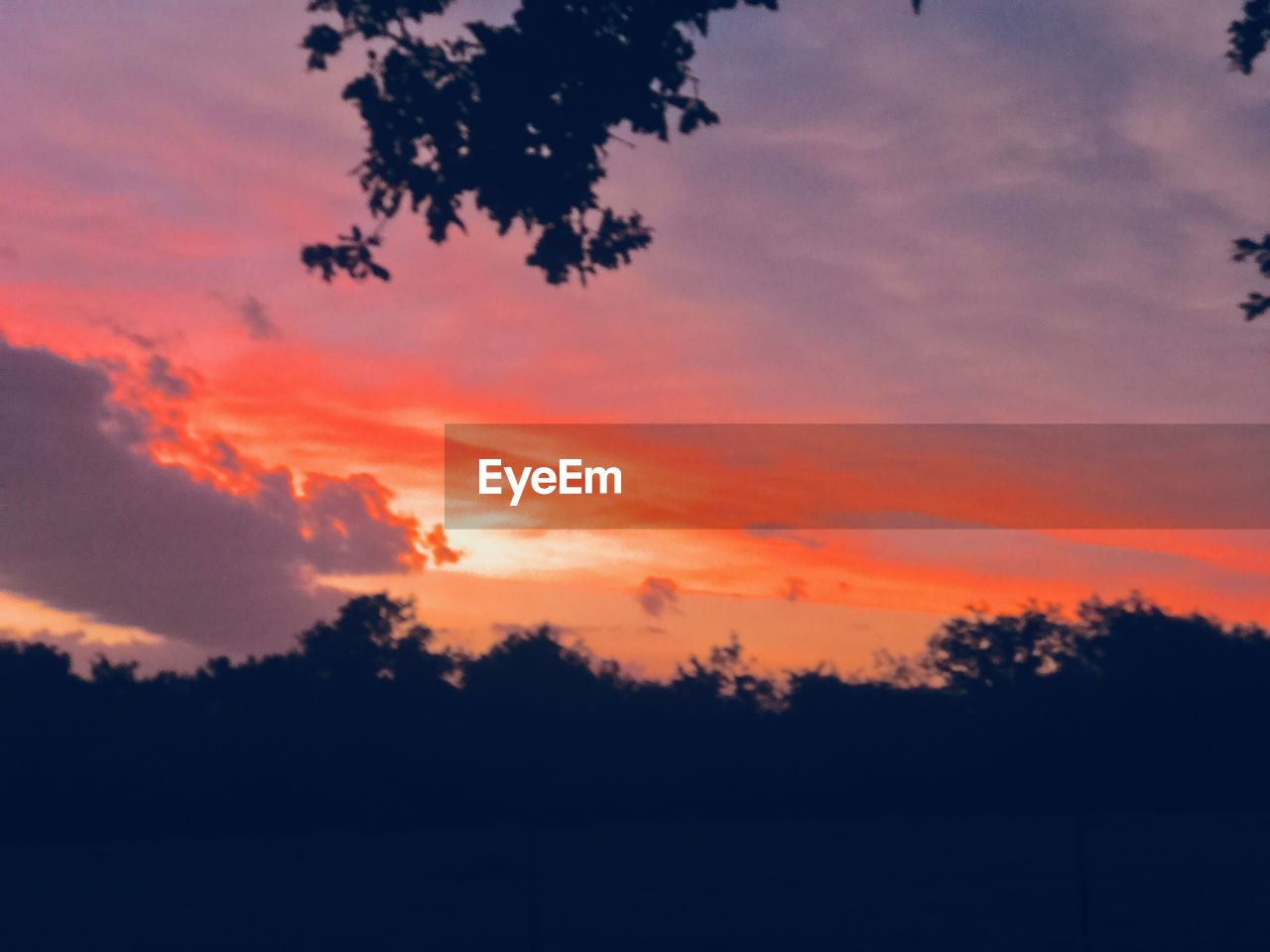 sunset, sky, beauty in nature, orange color, silhouette, tranquility, scenics - nature, tranquil scene, tree, cloud - sky, plant, nature, no people, idyllic, outdoors, environment, dramatic sky, growth, non-urban scene, landscape, romantic sky