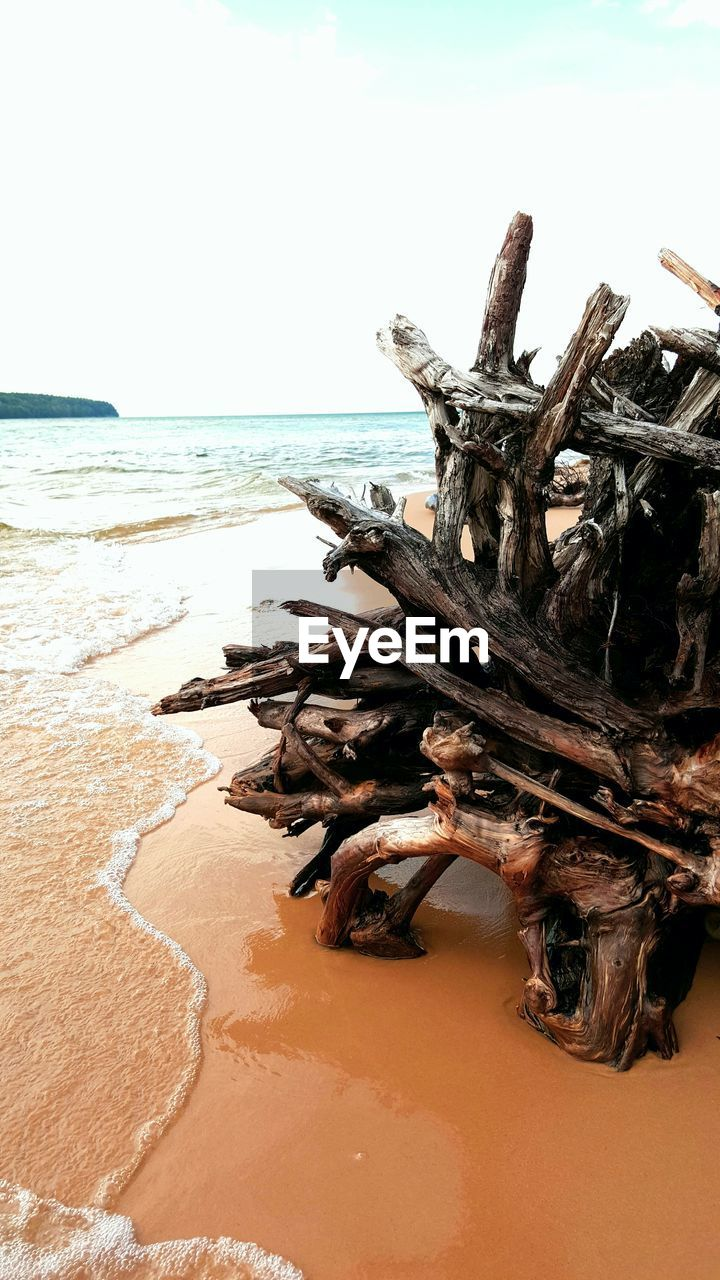 sea, beach, nature, horizon over water, tranquility, scenics, tranquil scene, beauty in nature, sand, day, no people, outdoors, sky, water, stack, dead tree, tree, close-up