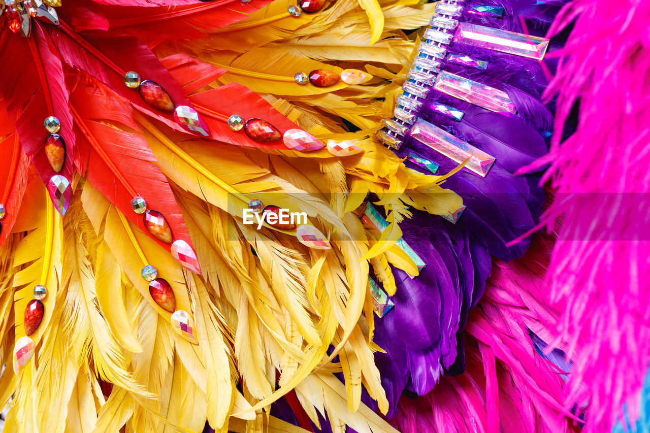 Full frame shot of multi colored feather decoration