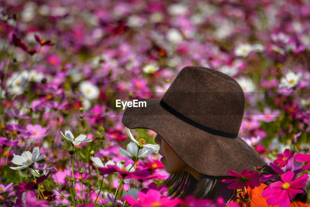 hat, plant, flowering plant, flower, clothing, nature, pink color, beauty in nature, growth, day, freshness, no people, close-up, fragility, focus on foreground, vulnerability, outdoors, land, field, petal, purple