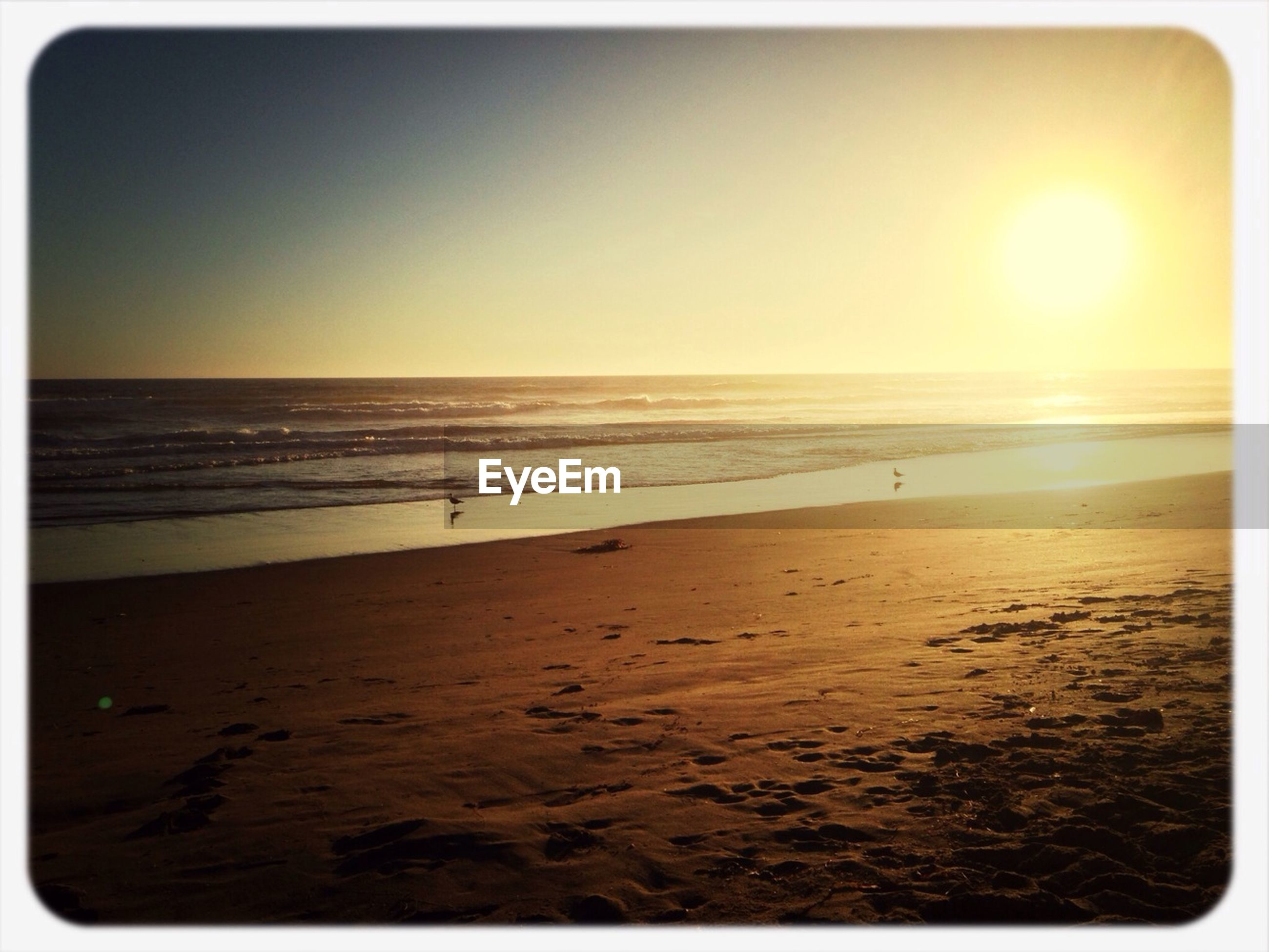 sea, beach, horizon over water, transfer print, water, shore, tranquil scene, sand, scenics, tranquility, beauty in nature, auto post production filter, sun, sunset, clear sky, nature, idyllic, sky, sunlight, copy space