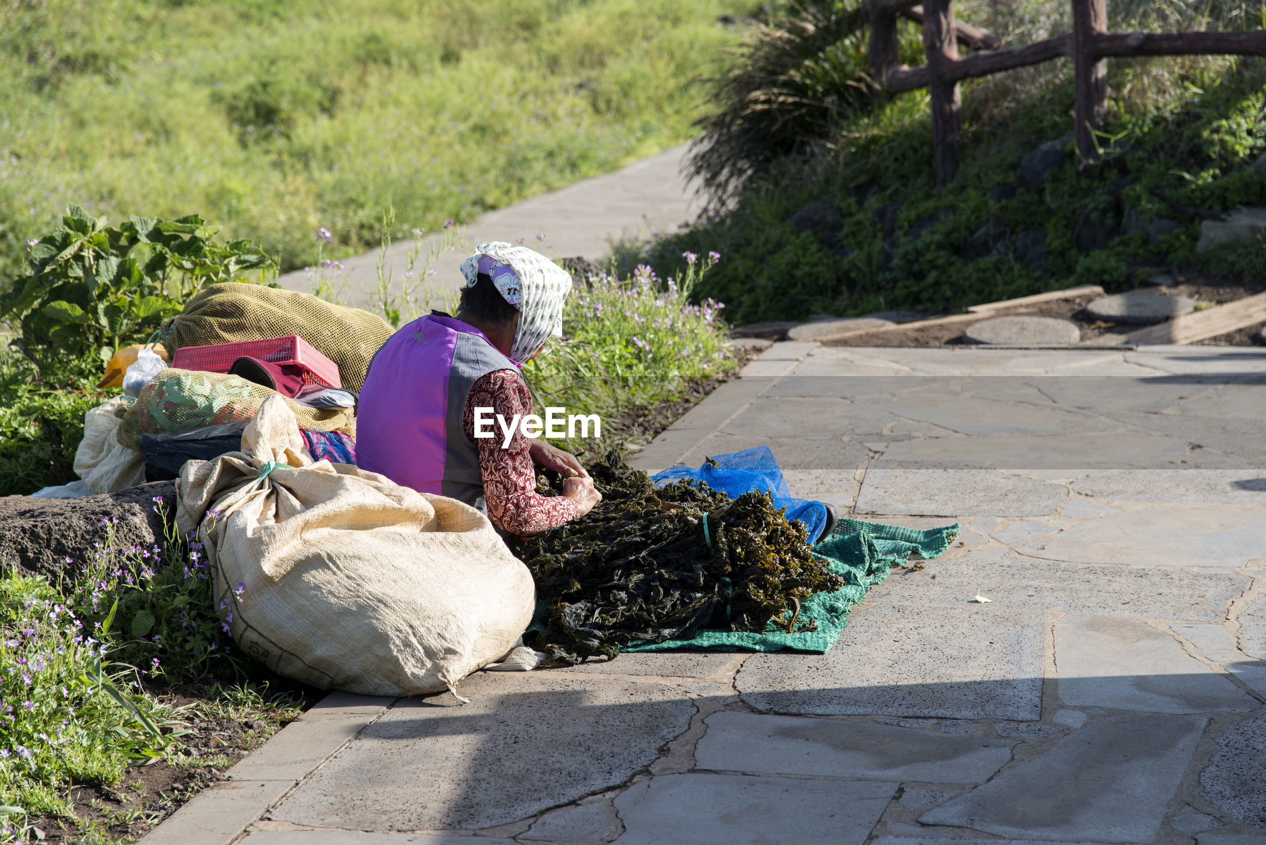 Woman selling sea weed while sitting on footpath