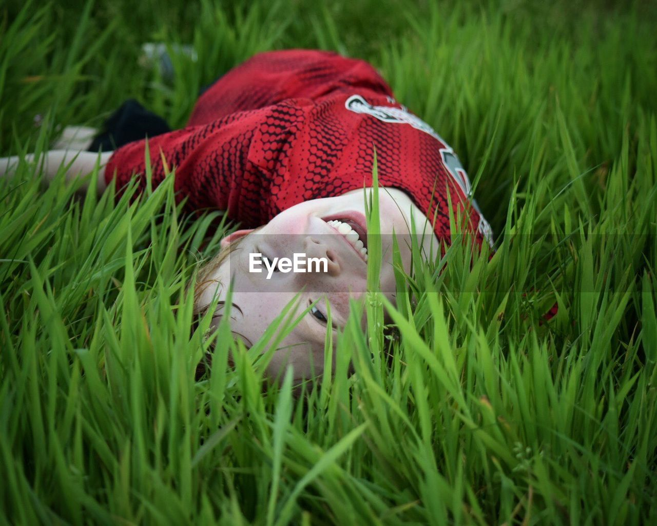 grass, plant, hat, green color, red, one animal, growth, dog, canine, animal themes, animal, mammal, nature, close-up, domestic, field, pets, day, land, domestic animals, no people, small