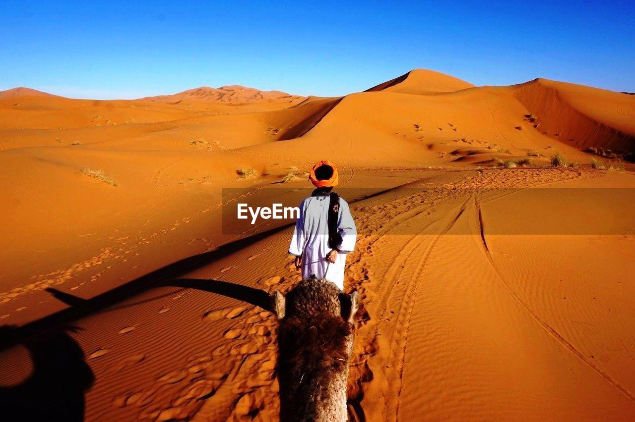 Rear View Of A Man In Desert