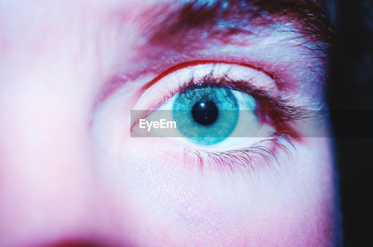 human eye, eyesight, eyeball, eyelash, human body part, one person, sensory perception, looking at camera, real people, close-up, iris - eye, eyebrow, portrait, indoors, day, people