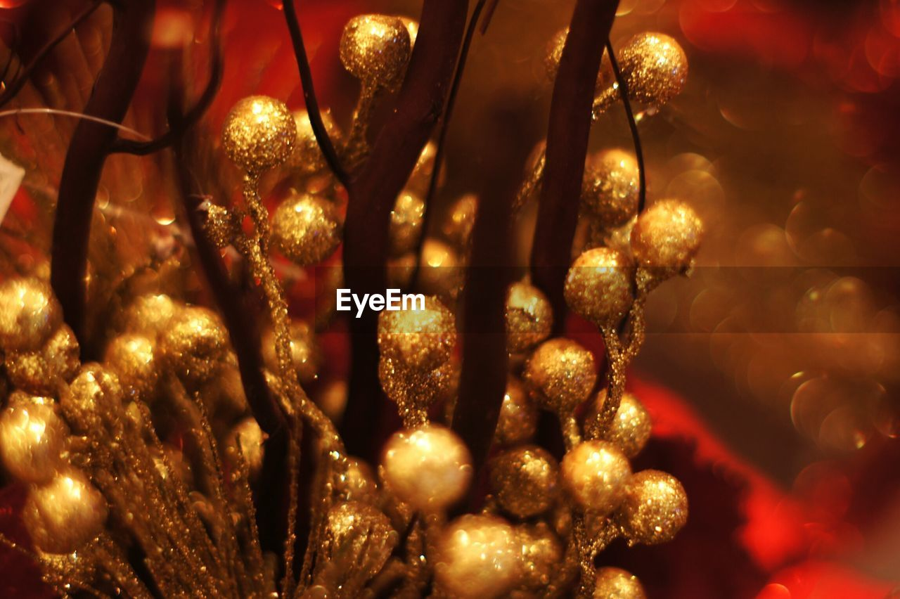 close-up, illuminated, no people, christmas, decoration, christmas decoration, celebration, holiday, christmas lights, christmas ornament, christmas tree, event, lighting equipment, indoors, tree, selective focus, celebration event, shiny, focus on foreground