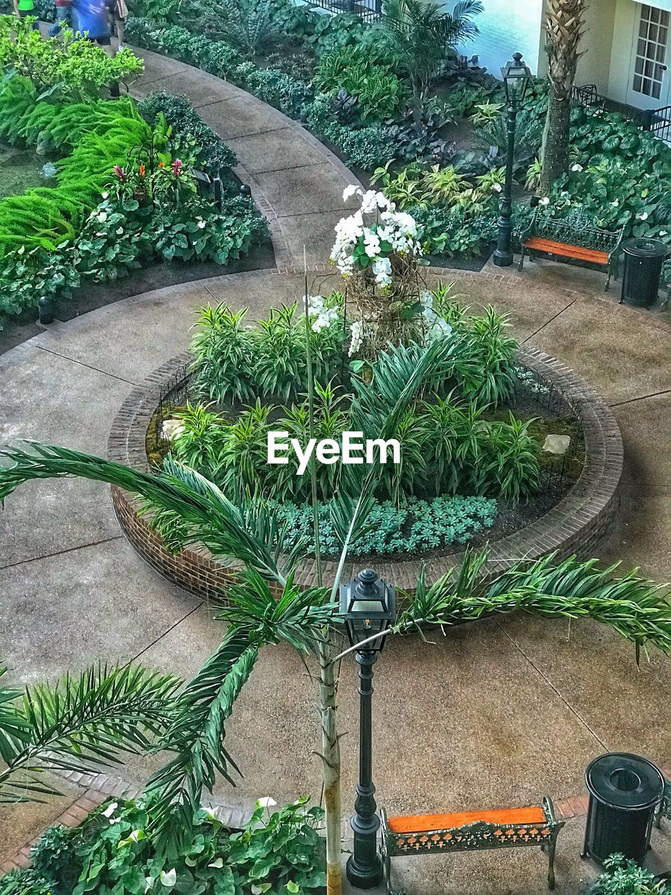 plant, growth, nature, green color, day, architecture, potted plant, no people, building exterior, beauty in nature, built structure, tree, outdoors, front or back yard, garden, leaf, high angle view, water, formal garden, plant part, houseplant