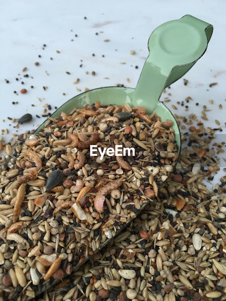 Close-up of various seeds and worms in shovel
