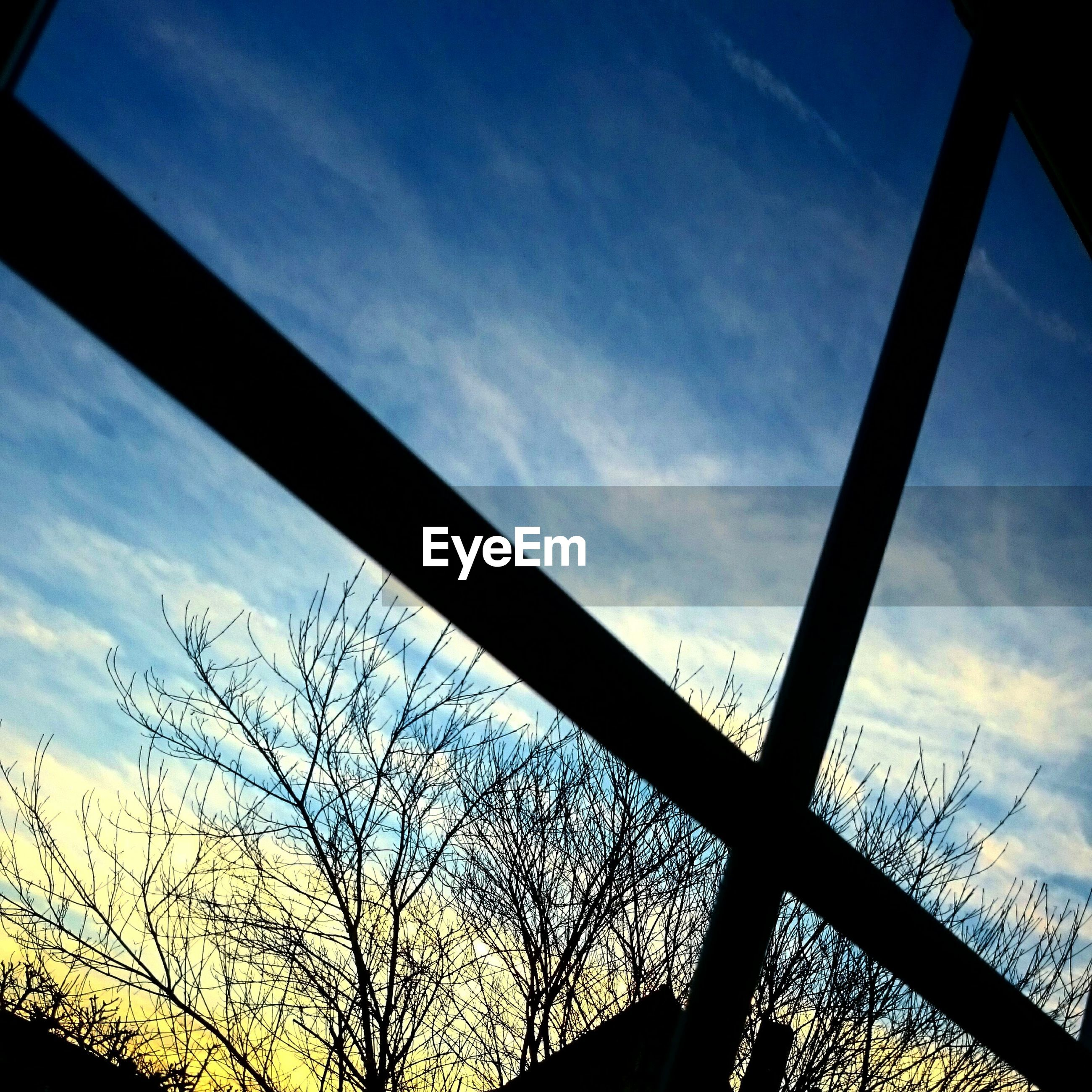 low angle view, silhouette, sky, cloud - sky, blue, sunset, tree, built structure, cloud, architecture, bare tree, no people, nature, dusk, outdoors, cloudy, backgrounds, connection, branch, high section