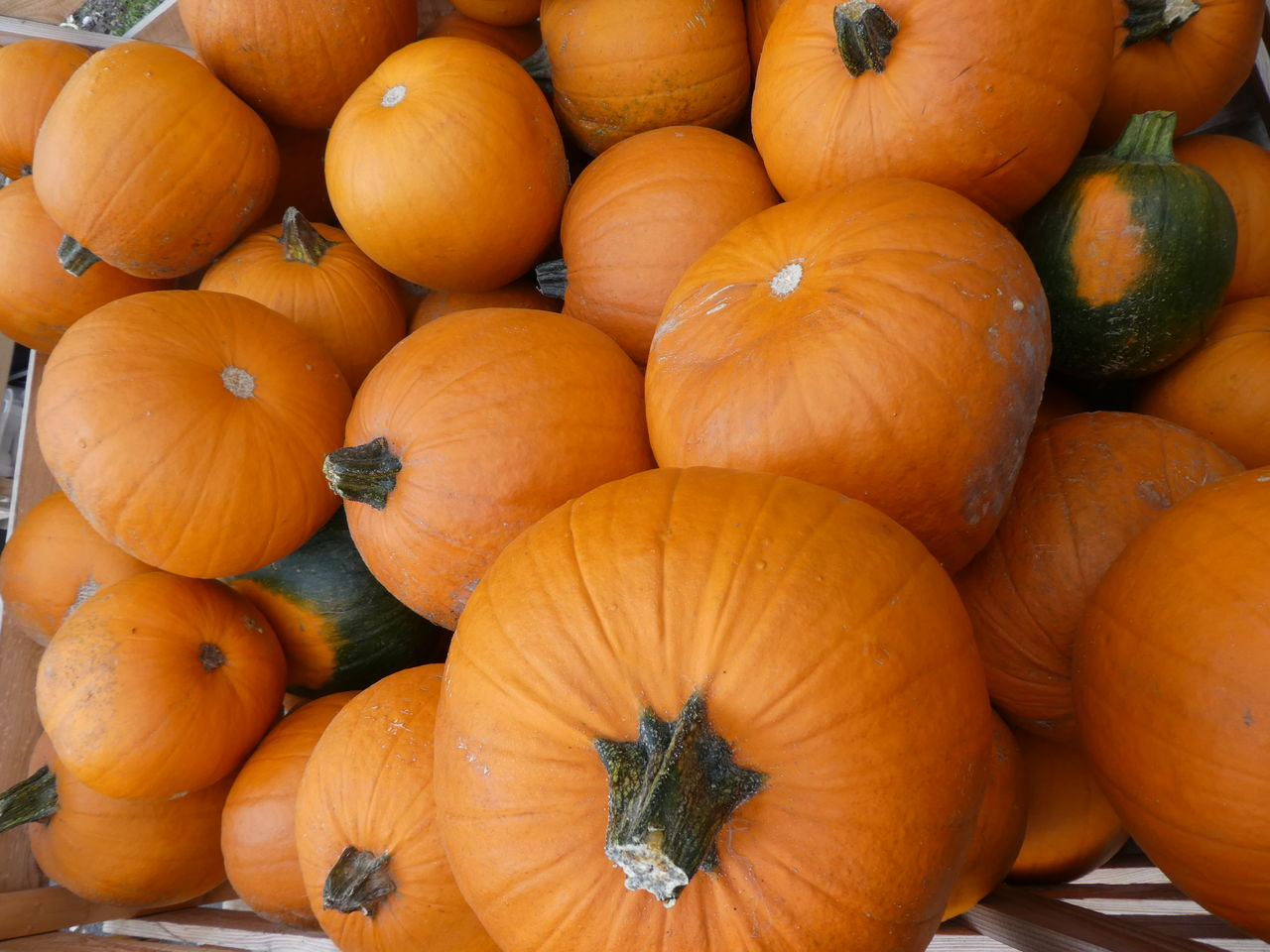 food and drink, food, healthy eating, wellbeing, orange color, freshness, pumpkin, vegetable, large group of objects, market, for sale, no people, full frame, market stall, abundance, still life, high angle view, day, retail, close-up, outdoors, organic, sale, ripe, retail display