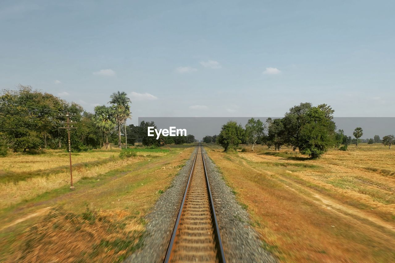 landscape, tree, no people, nature, tranquility, railroad, tranquil scene, sky, beauty in nature, scenics, railway, blue sky, day, outdoors, grass