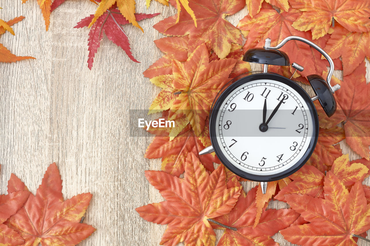 clock, time, alarm clock, clock face, number, leaf, plant part, minute hand, no people, instrument of time, clock hand, plant, orange color, close-up, hour hand, change, autumn, pattern, floral pattern, nature, leaves, maple leaf