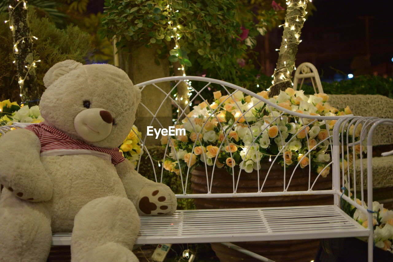stuffed toy, toy, plant, no people, representation, teddy bear, nature, flower, flowering plant, day, art and craft, creativity, softness, tree, focus on foreground, close-up, human representation, seat, outdoors