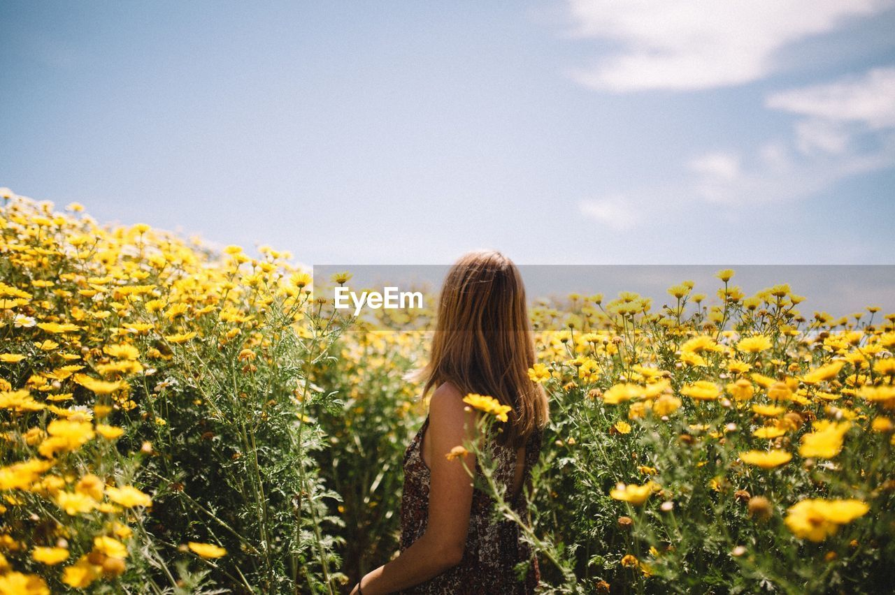 Woman With Yellow Flowers In Field