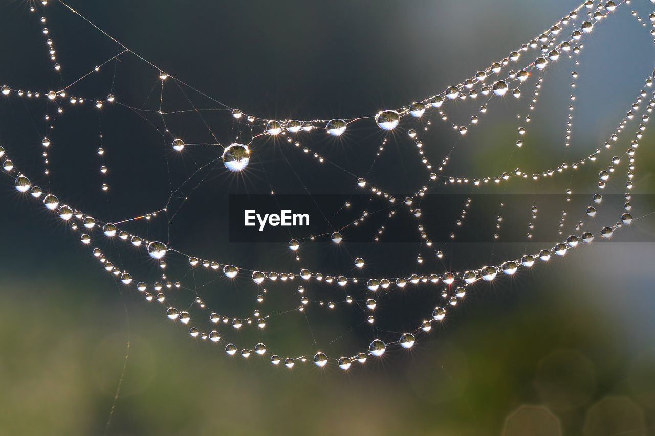 spider web, fragility, close-up, focus on foreground, vulnerability, drop, wet, no people, nature, water, spider, beauty in nature, illuminated, outdoors, pattern, night, animal, intricacy, complexity, dew, lens flare, web, raindrop