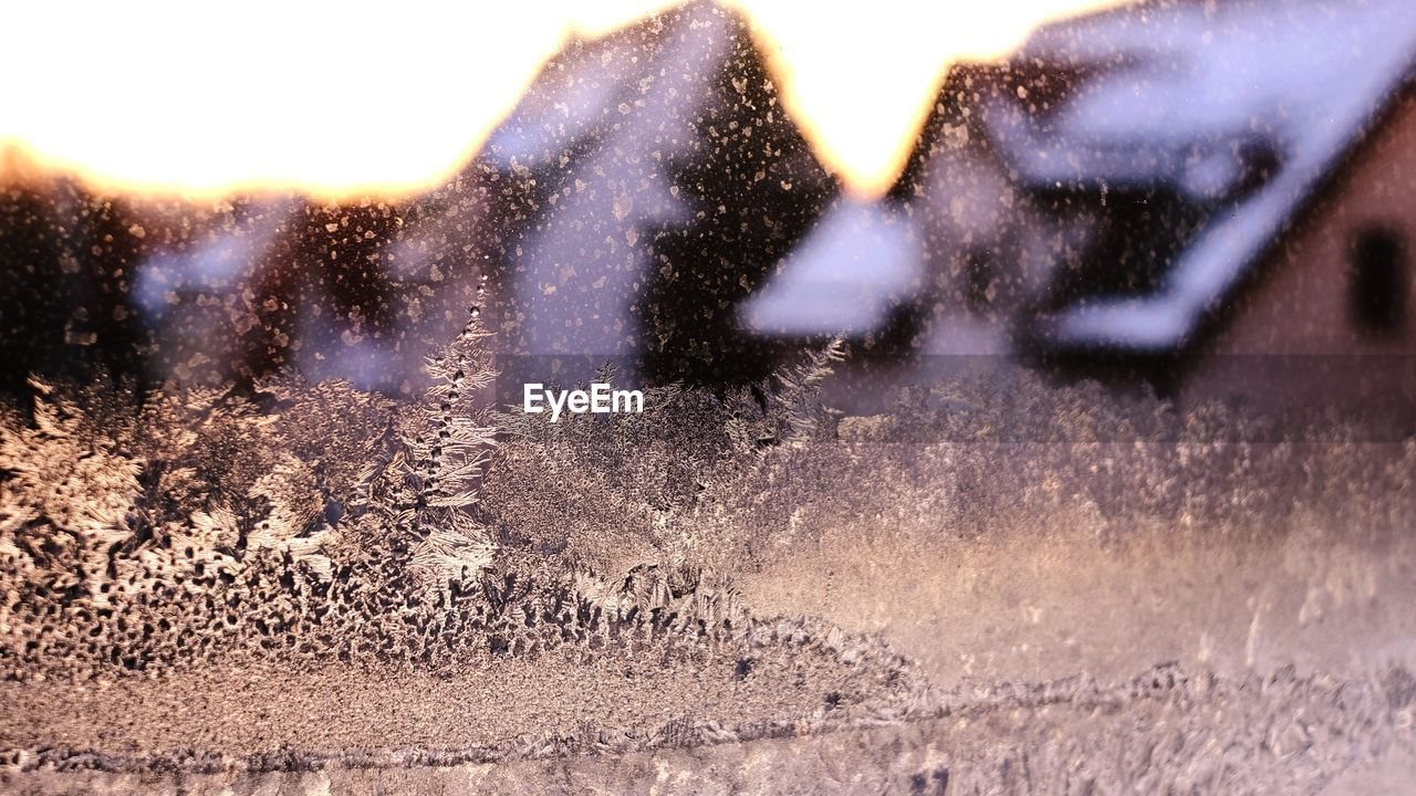 cold temperature, snow, winter, nature, day, no people, outdoors, beauty in nature, close-up, sky