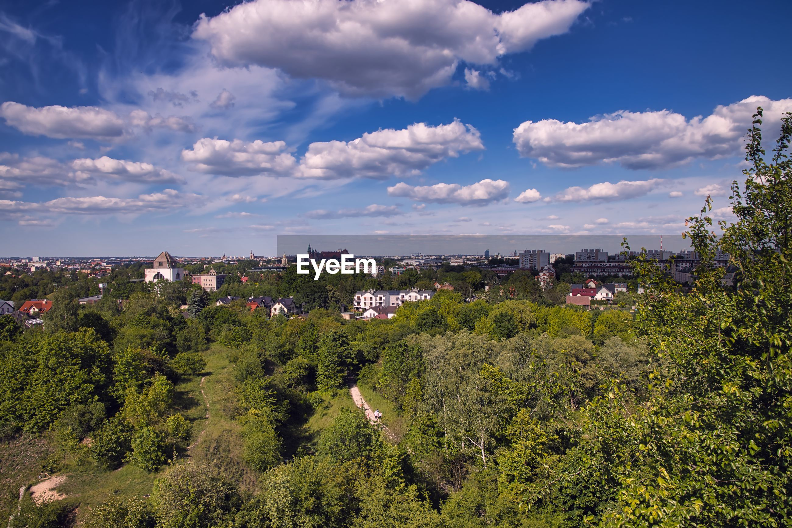 HIGH ANGLE VIEW OF TREES AND PLANTS AGAINST SKY