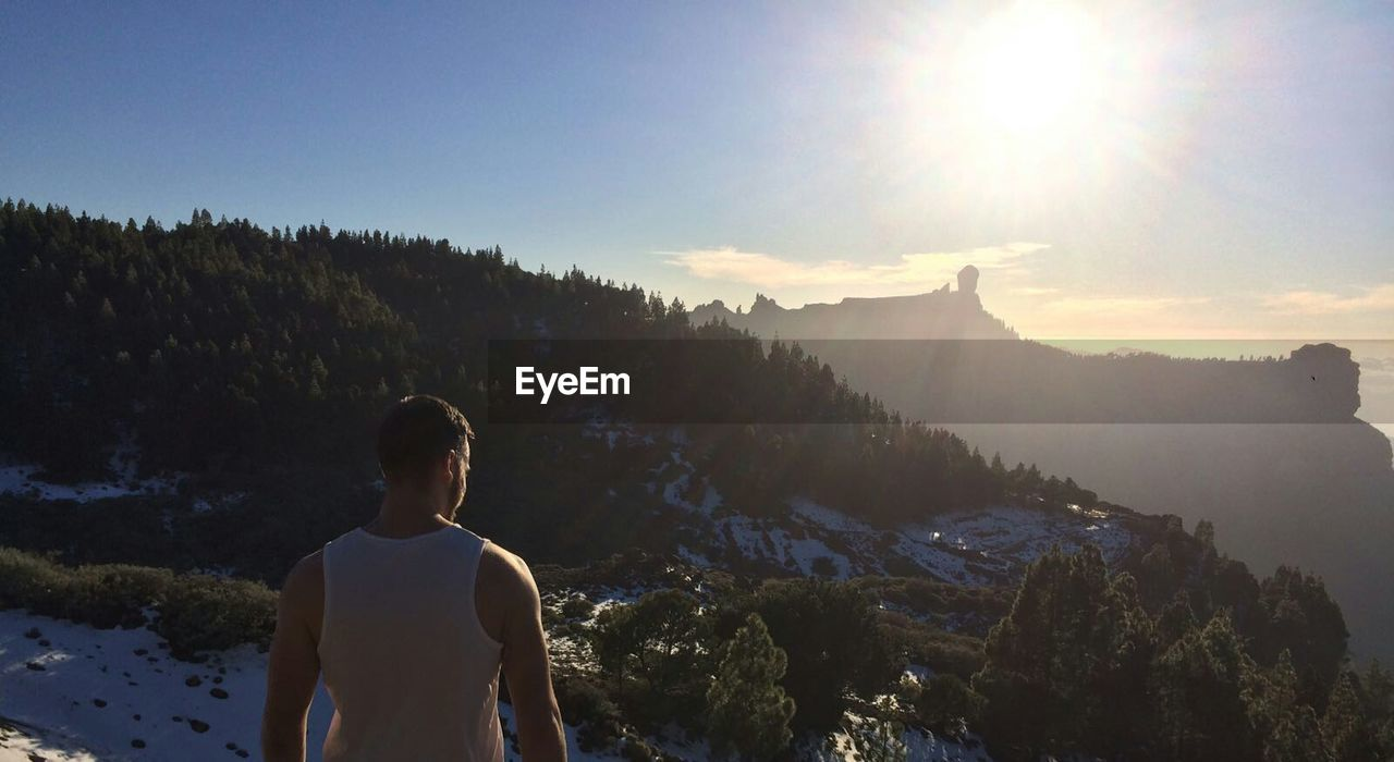Rear view of man looking at mountains on sunny day