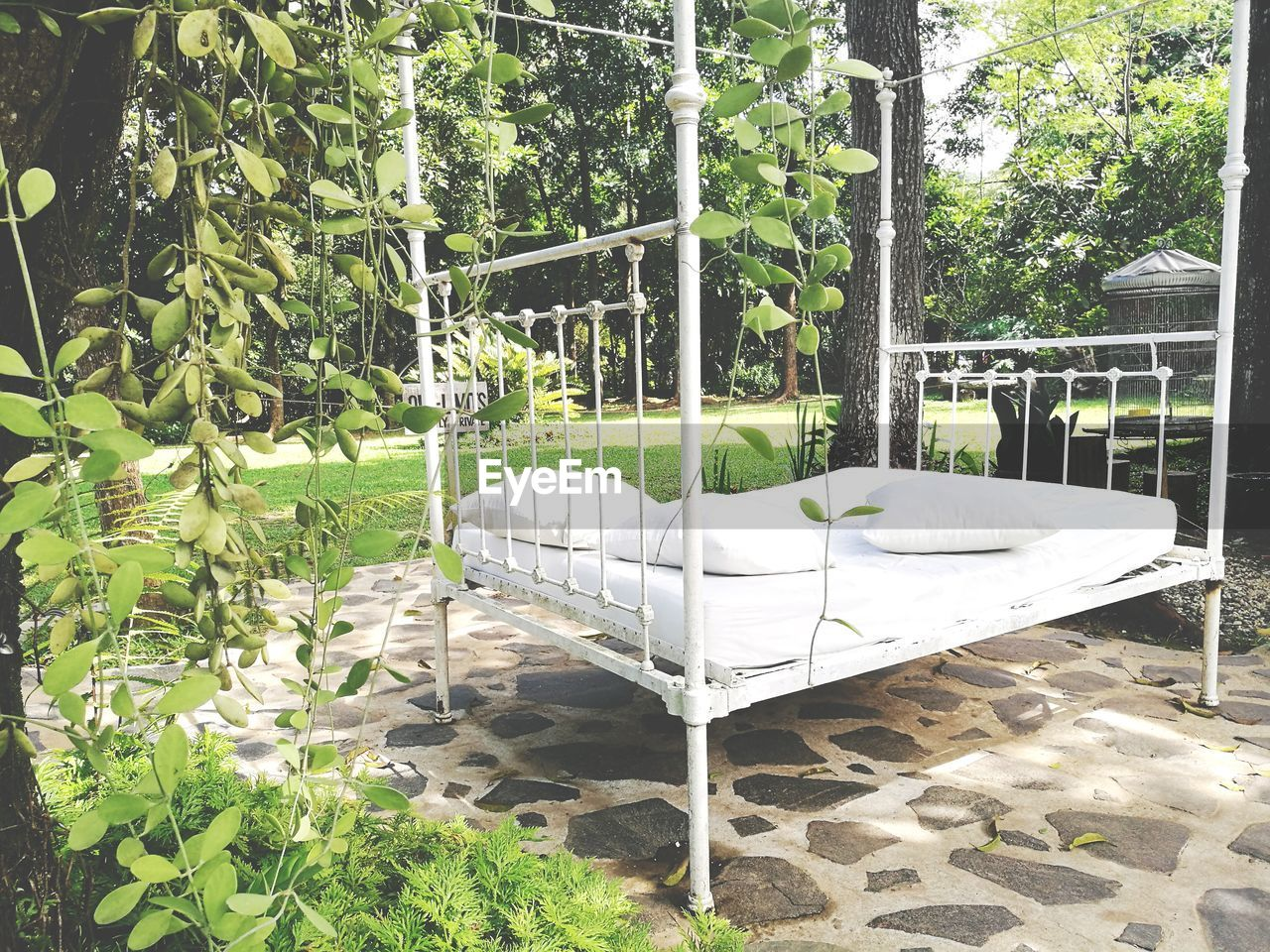 Bed In Yard